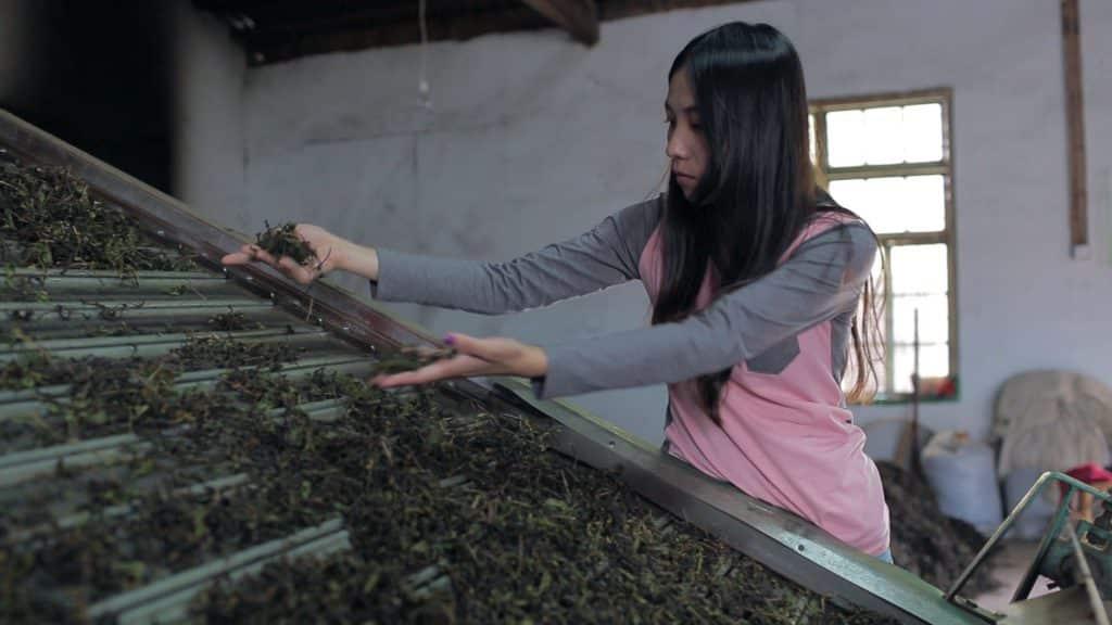 - Wuyishan
